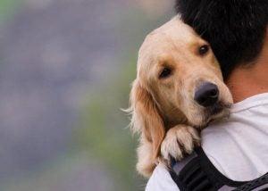 Hond die met zijn baasje knuffelt waardoor het hormoon oxytocine wordt vrijgelaten