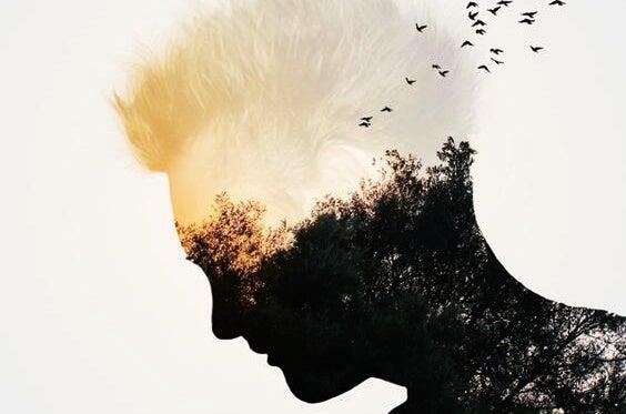 Man wiens lichaam bestaan uit een bos waar vogels uitvliegen