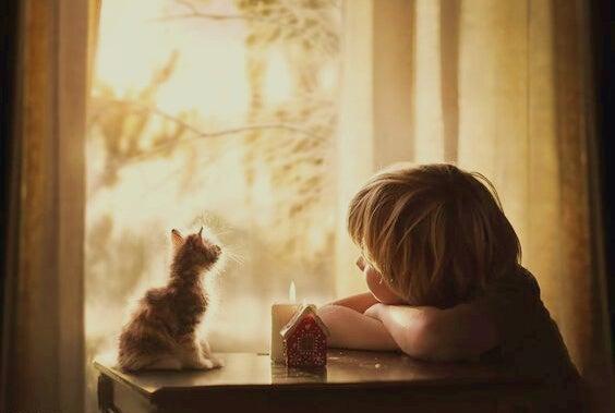 Klein jongetje dat samen met en klein poesje uit het raam kijkt