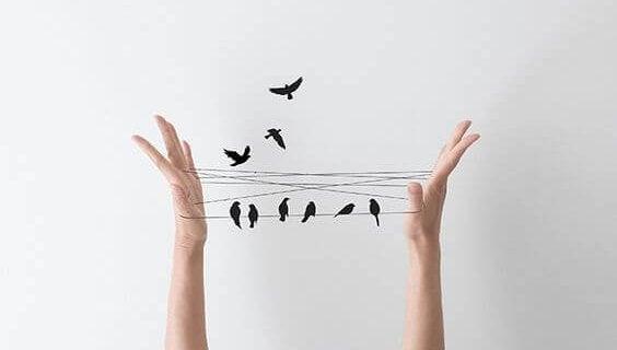 Twee handen die een touwtje vasthouden waar allemaal vogeltjes op zitten