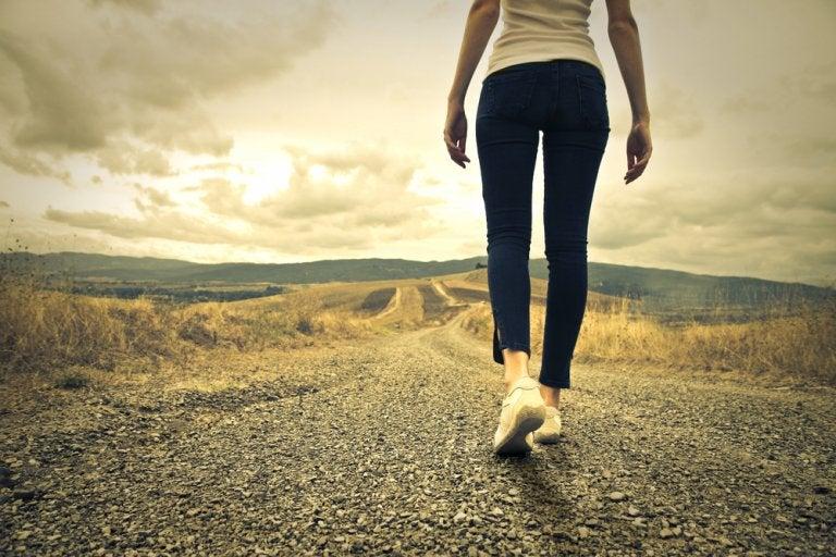 Je intelligentie verhogen door te wandelen in de natuur