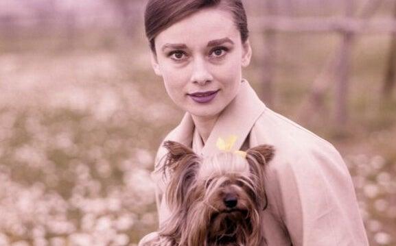 7 inspirerende uitdrukkingen van Audrey Hepburn