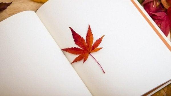Blaadje dat bewaart wordt tussen de pagina's van een boek
