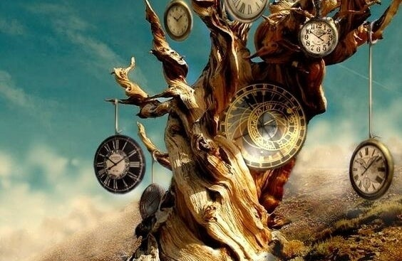 Dode boom die vol klokken hangt