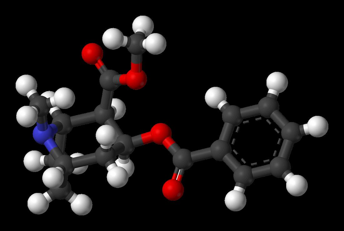 Chemische samenstelling van cocaïne