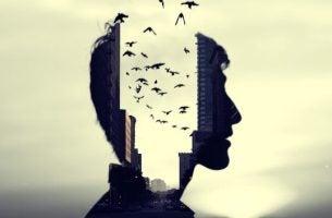 Man kan de lawaaierige stad niet uit zijn hoofd krijgen, hij moet beter leren omgaan met stress