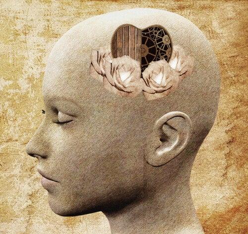 Kijk via het hart in de hersenen