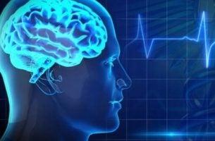 Hersenen met electro-encefalogram