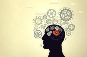Je intelligentie verhogen om meer mogelijk te maken