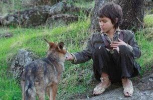 Leven tussen de wolven kan
