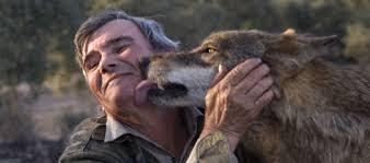 Man met wolf