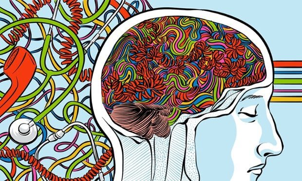 De nervus vagus en de hersenen