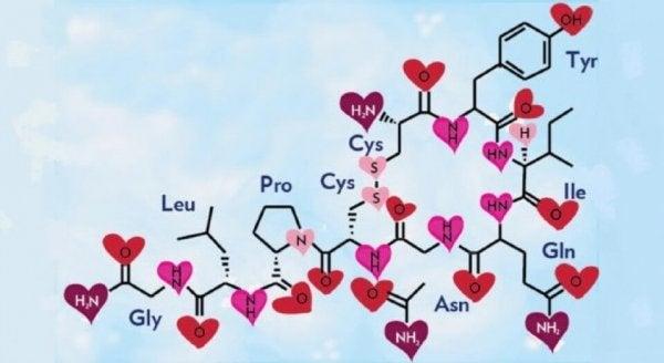 Chemie van de liefde zichtbaar in chemische verbindingen