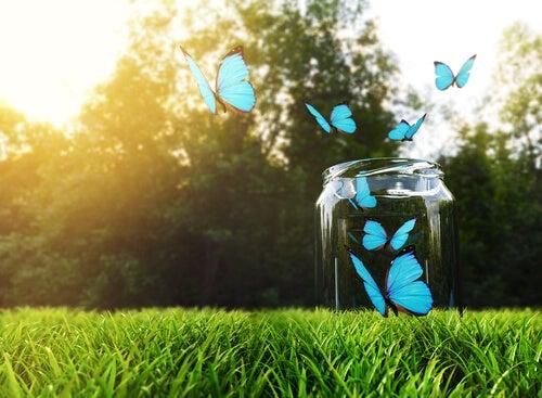 De gelukspot: hoe en waarom het werkt