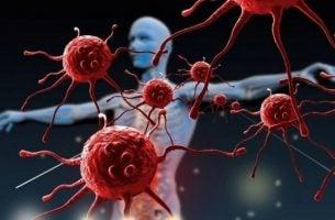 Je immuunsysteem versterken maakt je beter bestand tegen ziekten