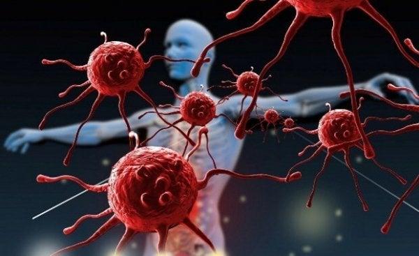 Hoe kun je je immuunsysteem versterken?