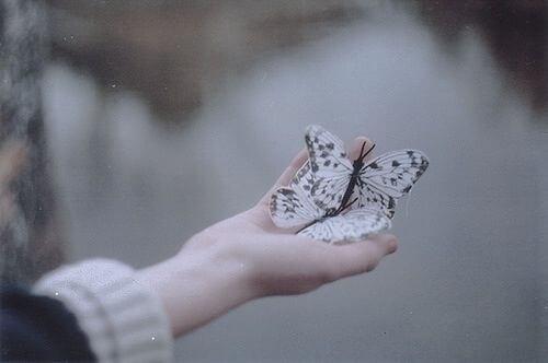 Twee vlinders in een hand als symbool voor evenwicht