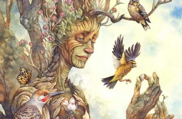 De wijsheid van bomen over het vinden van geluk