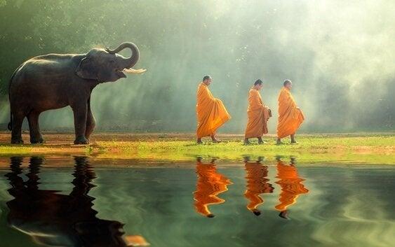 Drie boeddhistische monniken met een olifant