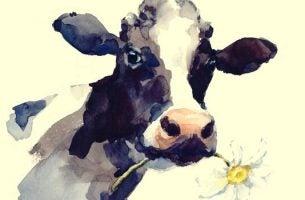 Koe met een bloem in zijn mond, als symbool voor het verhaal van de koe