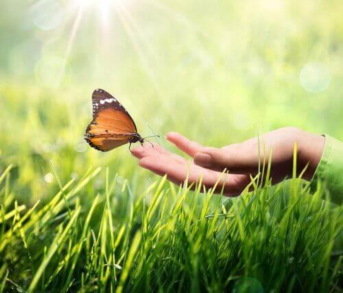 Vlinder op de vinger van een vrouw