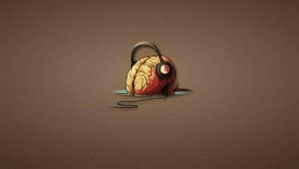 Invloed van muziek op de hersenen