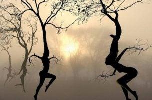 Dansende bomen die empathie tonen