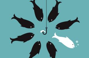 Een groep visjes die het oneens zijn met elkaar