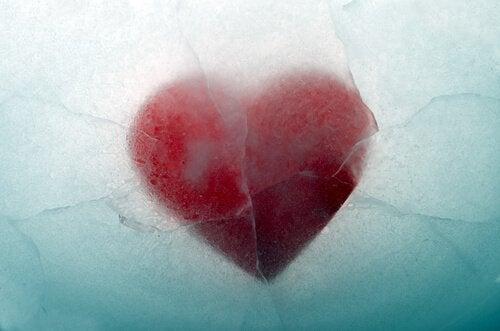 Een gebroken hart in ijs