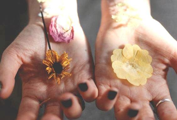 Handen die bloemen vasthouden