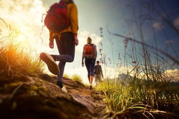 Wandelen in de natuur met een groep vrienden