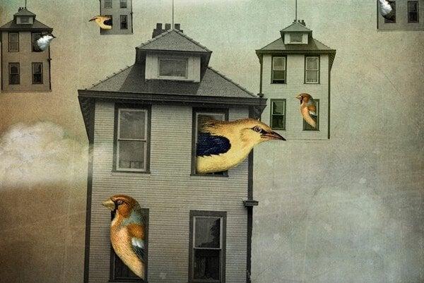 Zwevende huisjes waar vogels uit komen