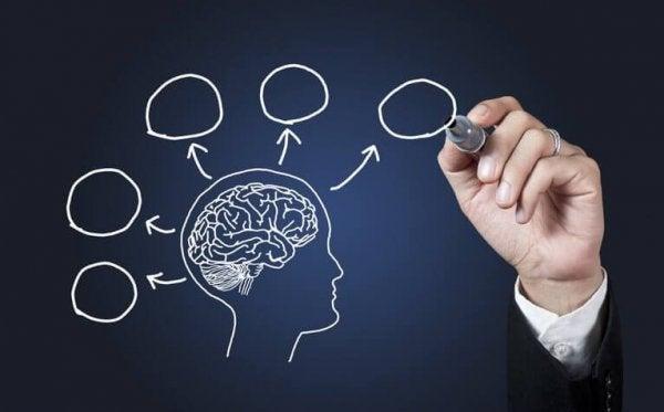 10 redenen om psychologie te studeren