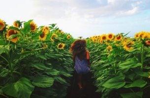 Onvergetelijke momenten zoals het moment waarop je rent door een veld vol zonnebloemen