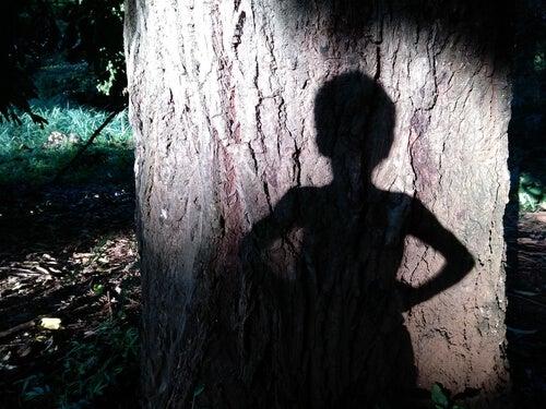 De schaduw van Peter Pan op een boom