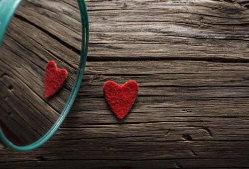 Gevaren van de liefde