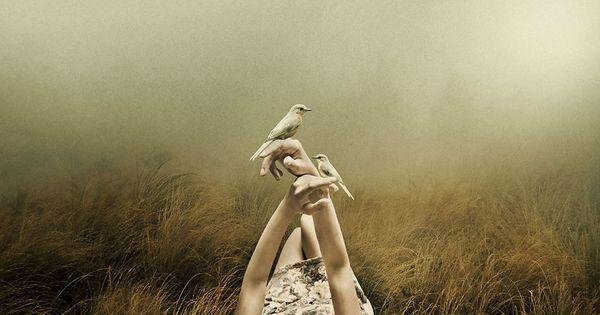 Vrouw in mistig veld met twee vogels op haar handen