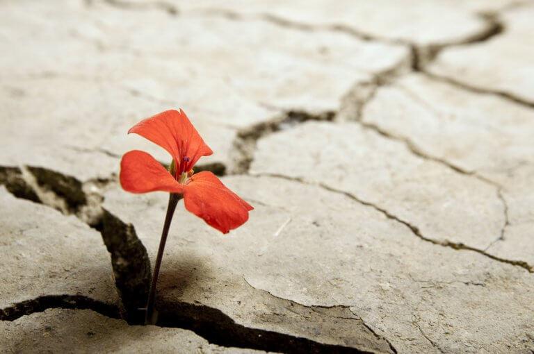Optimistische mensen, dappere mensen