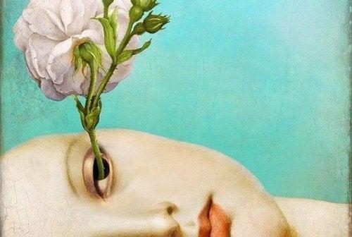Bloem groeit uit oog