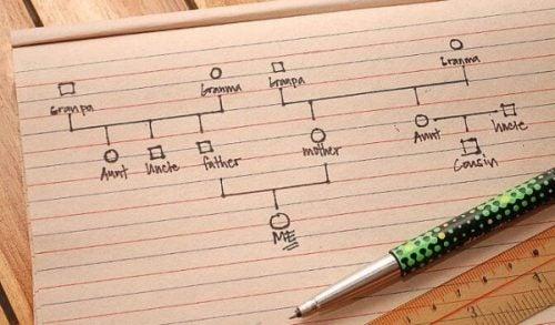 Hoe moet je een genogram maken? Het is eenvoudig met deze handleiding.