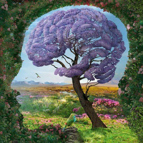 Het limbisch systeem: wat is het en hoe werkt het?