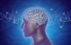 Hersengolven