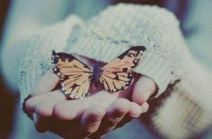Vertrouwen creëren waardoor een vlinder zomaar op je handen blijft zitten