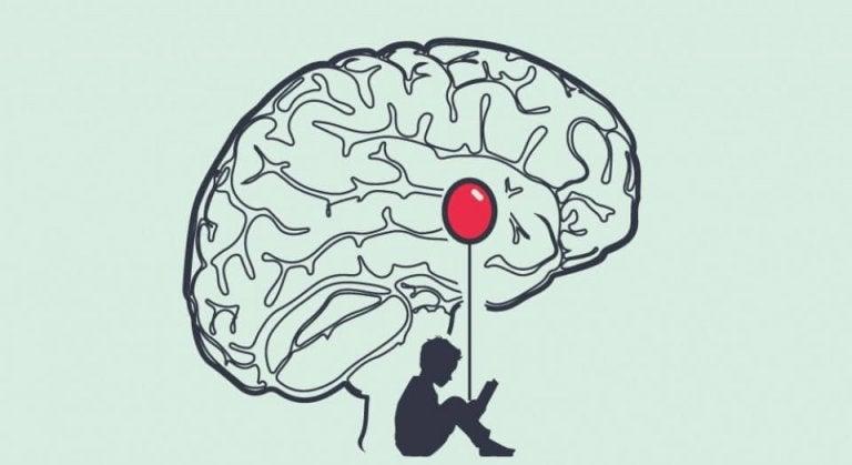 Het brein van een leugenaar werkt anders