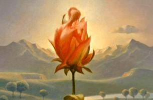 Roos die uitkomt, als symbool voor onze emotionele ruimtes