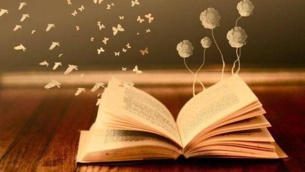 Een open boek, want boeken zijn spiegels