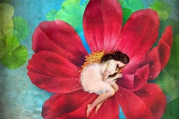 Meisje ligt opgekruld in een bloem