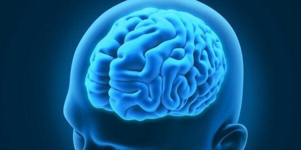 Drie buitengewone neurologische aandoeningen