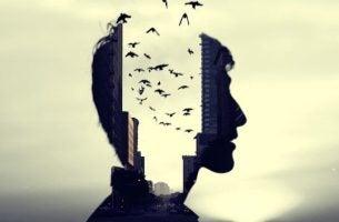 Een hoofd waar vogels doorheen vliegen, want Wilhelm Wundt was de vader van de psychologie
