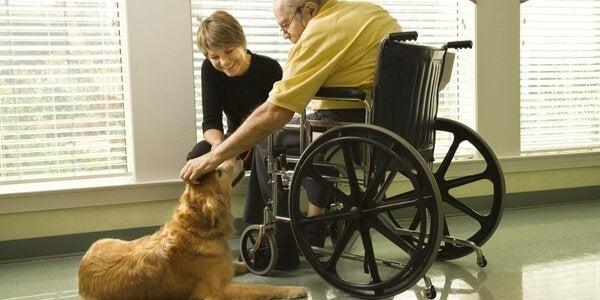 Patiënt met hond